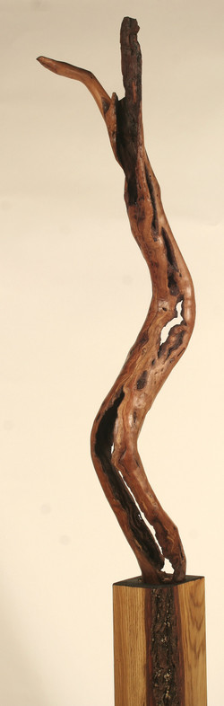 La goule brune