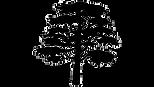 Cedarbrook-Logo-270Wx153H.png