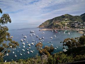 【美國】加州後花園-聖卡塔利娜島
