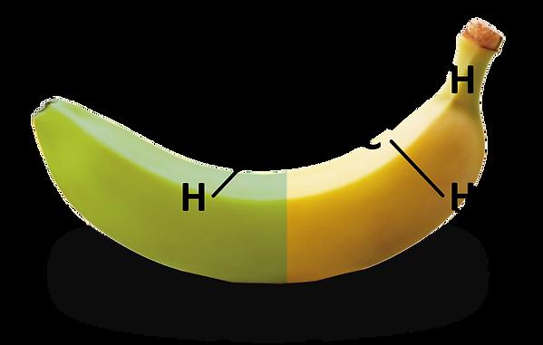 Banana Meio Madura 2-01.png