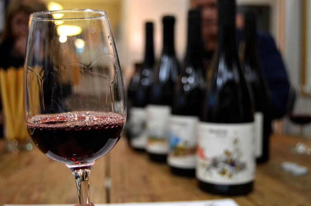 wine tasting with thistledown wines
