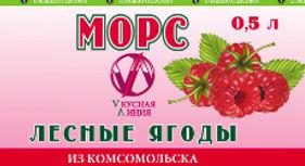 Морс Лесные ягоды 0,5 210Х55_edited.jpg