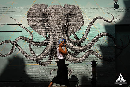 Hanbury street. Brick Lane E1 street art. London . Eas6QL . East End . Painting . Elephant Octopus . created by Alexis Diaz . Street Photography by Astéronyme. Graphic designer street photographer serial printer.