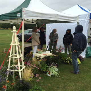 Plant Stall Dean and Shelton Flower Show