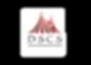 DSCS Favicom_1.png
