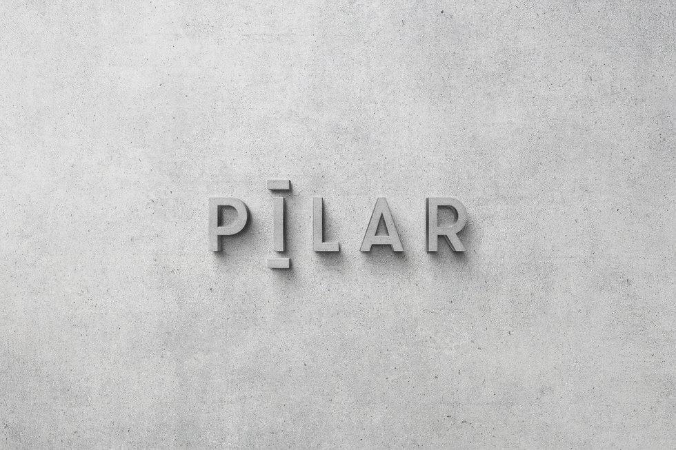 PILAR_LANDINGPAGE_2.jpg