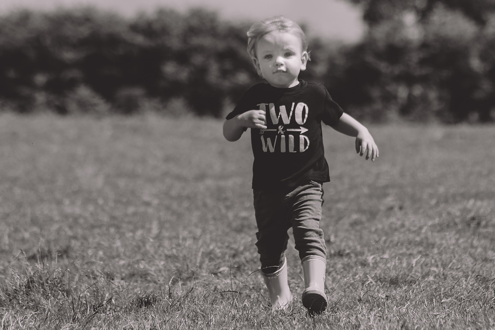 Abergavenny Photographer two year old running field outdoors