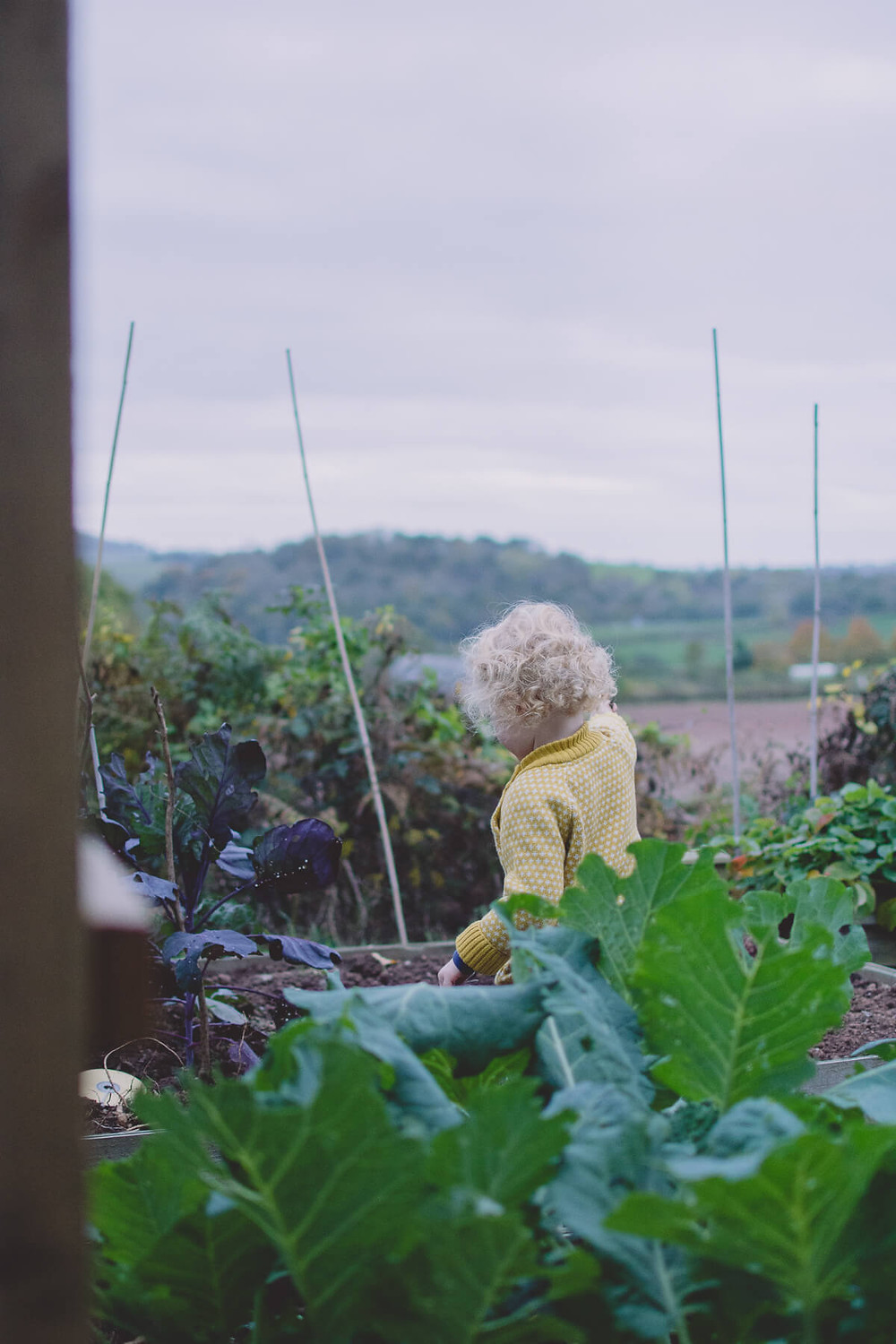 toddler playing in vegetable patch