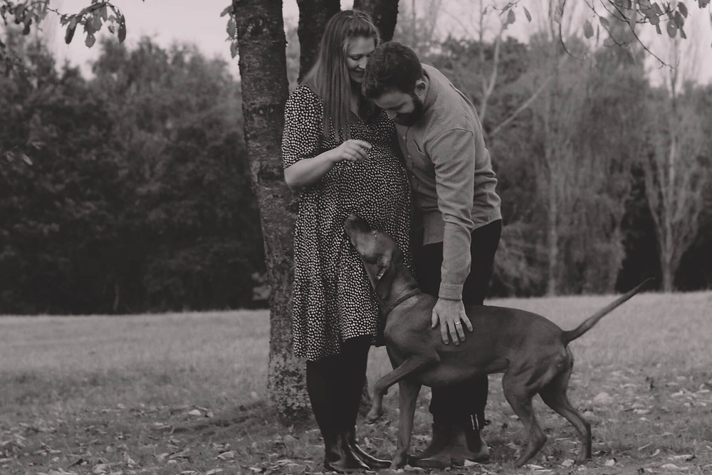pregnant couple play with dog