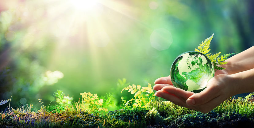 Energy & Environmental policy plan.jpg