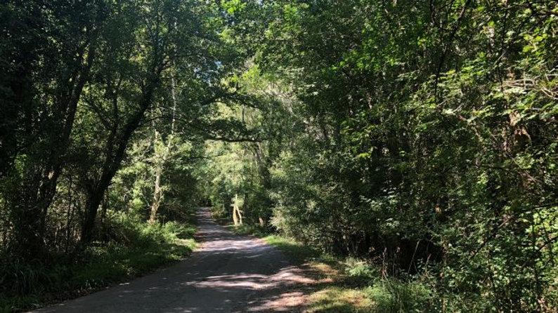 Broxmead Lane, Cuckfield