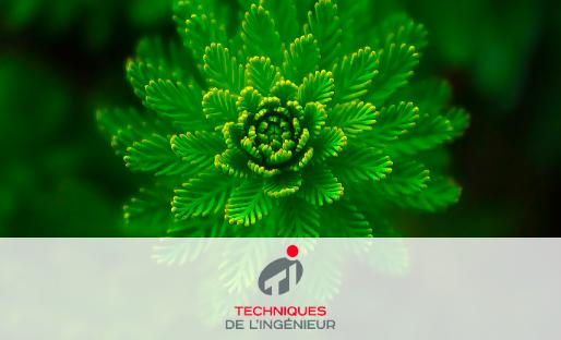 Webinaire biomimétisme : une source d'innovation inédite pour les industriel