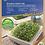 Thumbnail: Kiepenkerl MicroGreen Garden