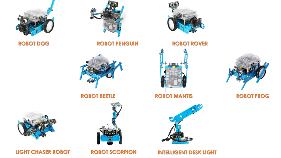 FORMS OF MBOT.png