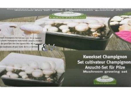 Mushroom grow set