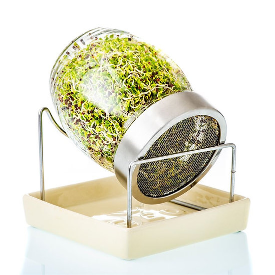 GEO Sprouting Jar