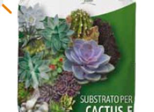 substrato para cactos
