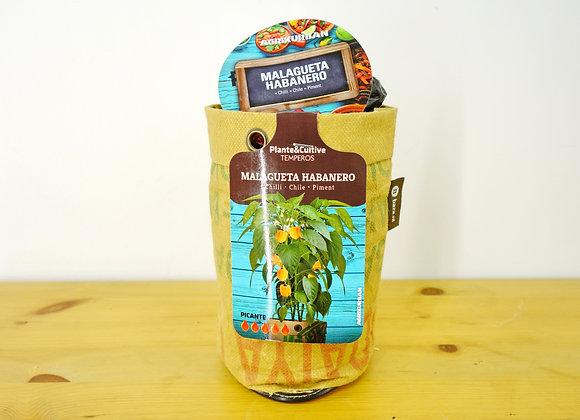 Habanero Pepper Bag