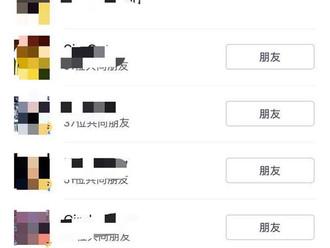 513全民樂迷普選日