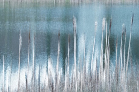 The sun rustles through the reeds the wind listens breathlessly