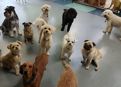 Posing at daycare