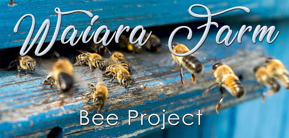 Bee project Face book.png