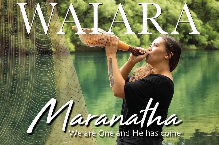 Waiara 2020 banner.png