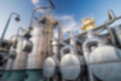 Hydrocarbon bioremediation, petroleum degradation,