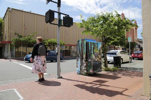 Eureka Box Art | Pedestrian walking