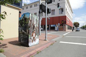 Eureka Box Art | Bigfoot