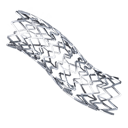 stent (1).png
