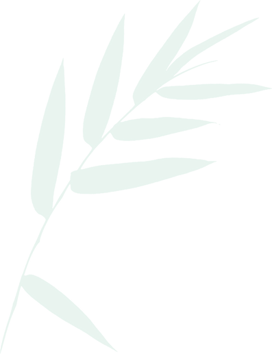bamboo-leaves-christopher-johnson.png