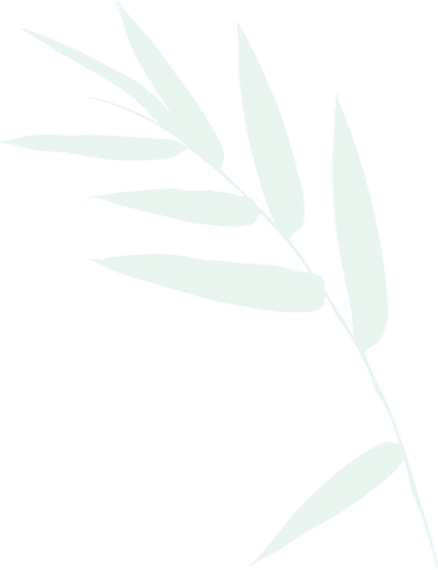 bamboo-leaves-christopher-johnson copy.p