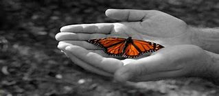 Embrace the butterflies (Using cognitive reappraisal to turn anxiety into excitement).
