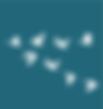 principle2-icon-blue-birds.png