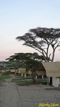 mobile explorer tents
