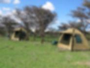 Adventure tents