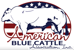 americanblue.png