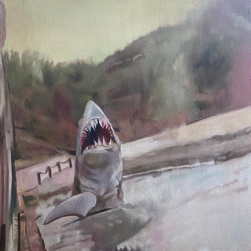 """Shark"", Original 20"" x 20"""