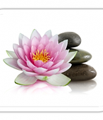 Yoga Lotus.png