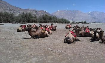 Pangong to Nubra Valley.jpg