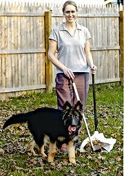 dog poop service