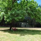 Grassy Fields for Soccer & Games