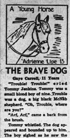 The Brave Dog - A McNab Named Trouble.