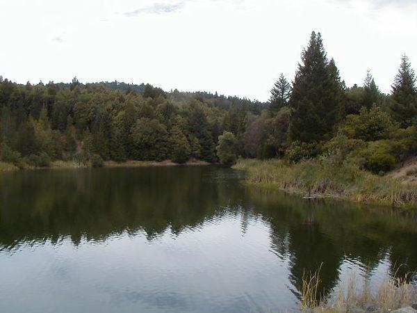 Lake Ada Rose