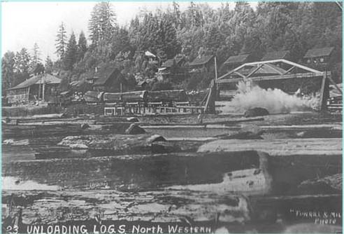 Unloading logs at Northwestern Mill