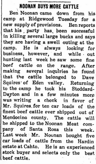 Noonan Buys More Cattle
