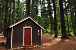 Sycamore Cabin