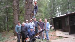 Tree Helpers