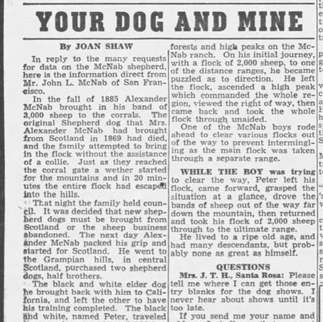 Your Dog and Mine, with Letter from John McNab